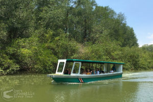Our river boat in the mangrove forest canal